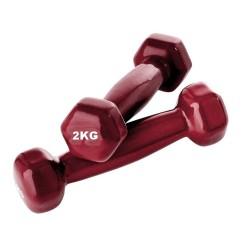 Haltères 2kg X2